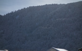 Bergeeinsatz Auenlatschbach